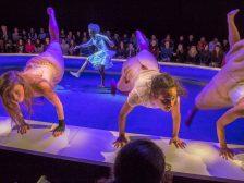 MF 6 Voorjaarsoffer_Maas theater en dans ®PhileDeprez